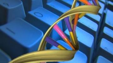 Scoperti i vantaggi del rumore nei circuiti biologici