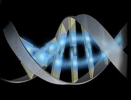 wpid-10559_genoma.jpg