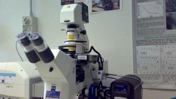 Cat e' il super-microscopio 3D