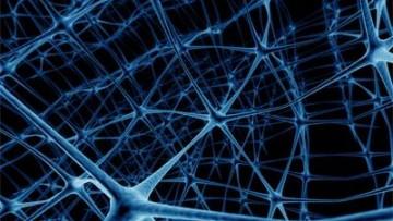 Da cellule della pelle a neuroni