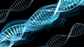 Sla: scoperto un nuovo gene responsabile della malattia
