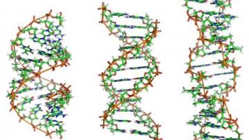 """Il """"google"""" della genetica arriva dall'Universita' di Cagliari"""