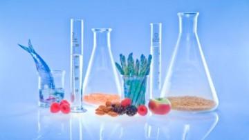VIII Congresso Nazionale di Chimica degli Alimenti