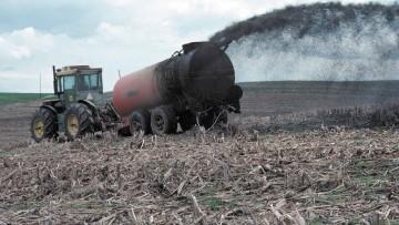 Usi e sprechi del fosforo in agricoltura, l'Ue avvia una consultazione