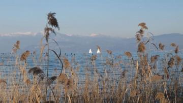 Escherichia coli nei laghi italiani, l'allarme di Legambiente