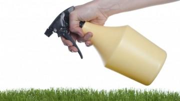 Via al nuovo regolamento europeo sui biocidi