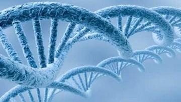 Iniziata la Settimana Europea delle Biotecnologie
