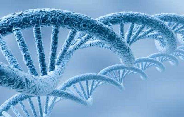 wpid-18614_biotech.jpg