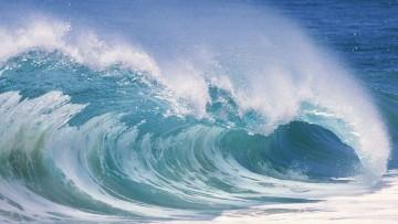 Energia dalle onde del mare? Al Politecnico di Milano nasce Techflue