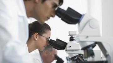 Scienze ambientali e rischio ecologico: un premio per la ricerca