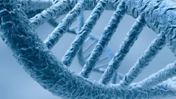La terapia genica efficace contro i tumori