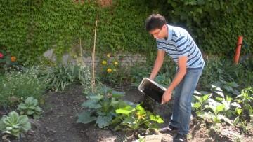Milano dice si' alla raccolta della frazione organica