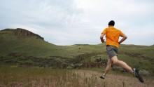 La corsa produce nuove staminali