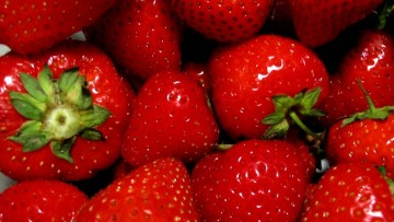 La biochimica della fragola in uno studio italiano