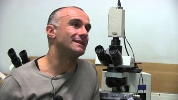 Cristallografia, studio Polimi riceve finanziamento internazionale