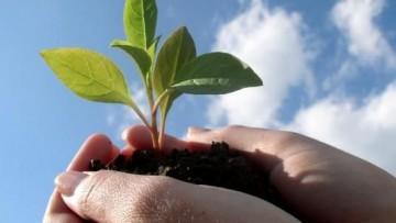Sviluppo sostenibile e ruolo della chimica