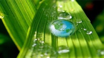 #AmbienteProtetto, disposizioni urgenti per la tutela ambientale