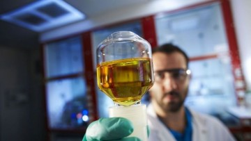 Il batterio che produce idrogeno dalla fermentazione degli scarti organici