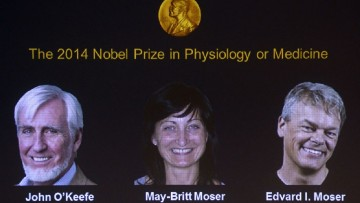 Il Premio Nobel 2014 per la medicina al 'Gps' del cervello