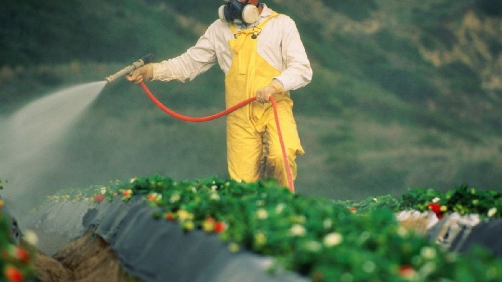 wpid-25647_pesticidi.jpg