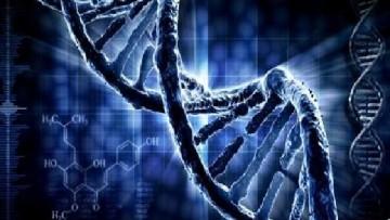 Cura dell'autismo con farmaci molecolari: uno studio italiano