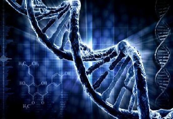 wpid-25683_DNA.jpg