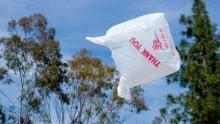 Sacchetti di plastica, l'Ue ratifica l'accordo per la riduzione