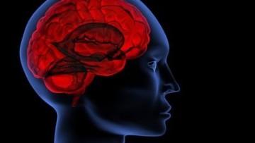 Deja-vu, la ricerca Cnr prova a spiegarne le cause