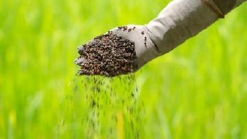 Fertilizzanti: la distribuzione continua a diminuire