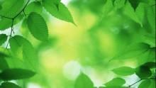 Professioni tecniche e Ministero dell'Ambiente uniscono le forze
