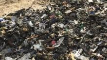 Delitti ambientali, il ddl diventa legge