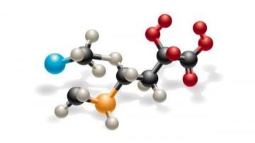 Sonde molecolari per analizzare l'azione dei radicali liberi