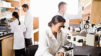 Enzimi modificati geneticamente per eliminare sostanze chimiche dall'ambiente
