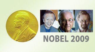 Nobel per la fisica assegnato per le tecnologie sulle fibre ottiche e per i sensori CCD