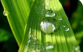 Chimica responsabile per lo sviluppo sostenibile