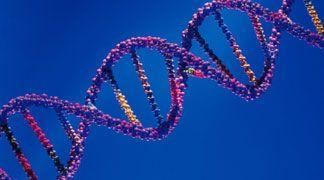Sviluppato un nuovo metodo per il sequenziamento del DNA