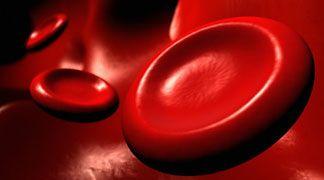 Creati i primi globuli rossi sintetici