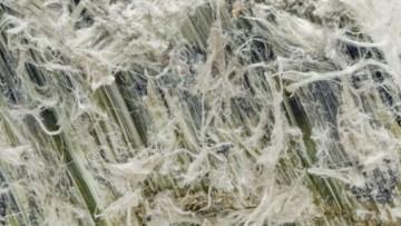 Fibre artificiali organiche al posto dell'amianto