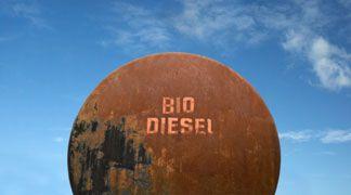 Un processo più efficiente per produrre biodisel