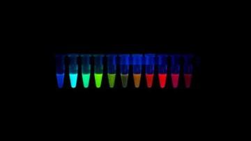 Il Cnr sviluppa il nuovo biosensore per cloro e pH
