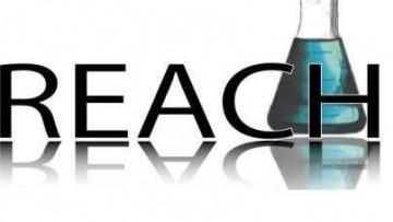 Reach: ultima chiamata dall'ECHA per adeguarsi