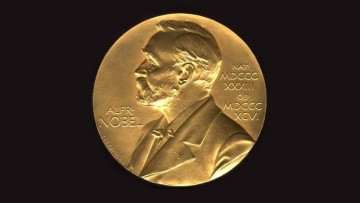 Il Nobel per la chimica assegnato per la ricerca sui catalizzatori