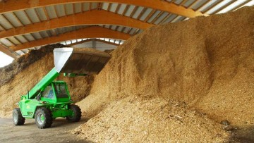 Biomasse: nuova classificazione chimica