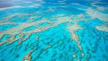 Troppo fosforo e plastica negli oceani: l'allarme dell'Unep