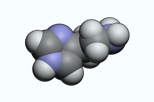 wpid-8515_molecola.jpg