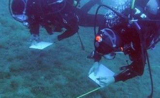 Scoperto un filone metallifero nel Pacifico