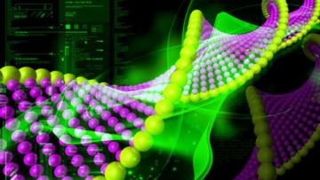 Spinach: un nuovo strumento per studiare l'RNA