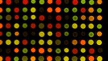 Messaggi biocodificati dai batteri: gli Spam