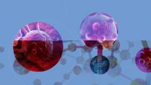 Carcinogenesi: 50 agenti chimici ambientali su 85 sono influenti