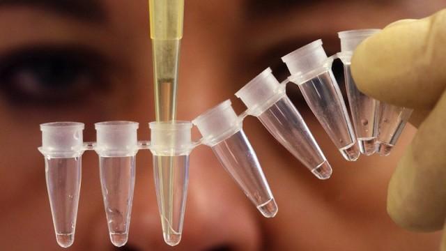 Molecole naturali contro il cancro: la scoperta di una task force internazionale